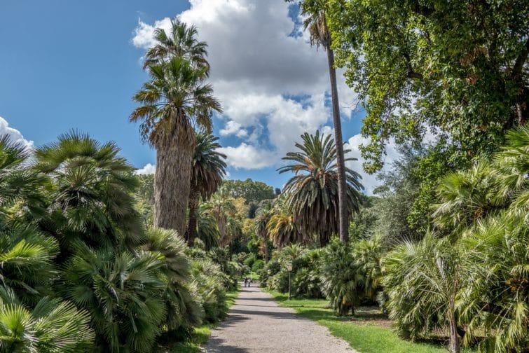 Le jardin botanique de Rome