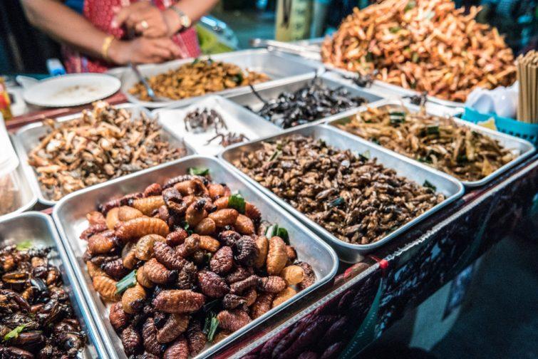 Des insectes sautés dans les rues de Khao San Road à Bangkok, en Thaïlande
