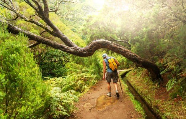 Les 10 plus belles randonnées à faire à Madère
