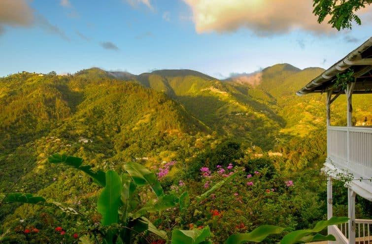 Blue Mountains, Jamaïque