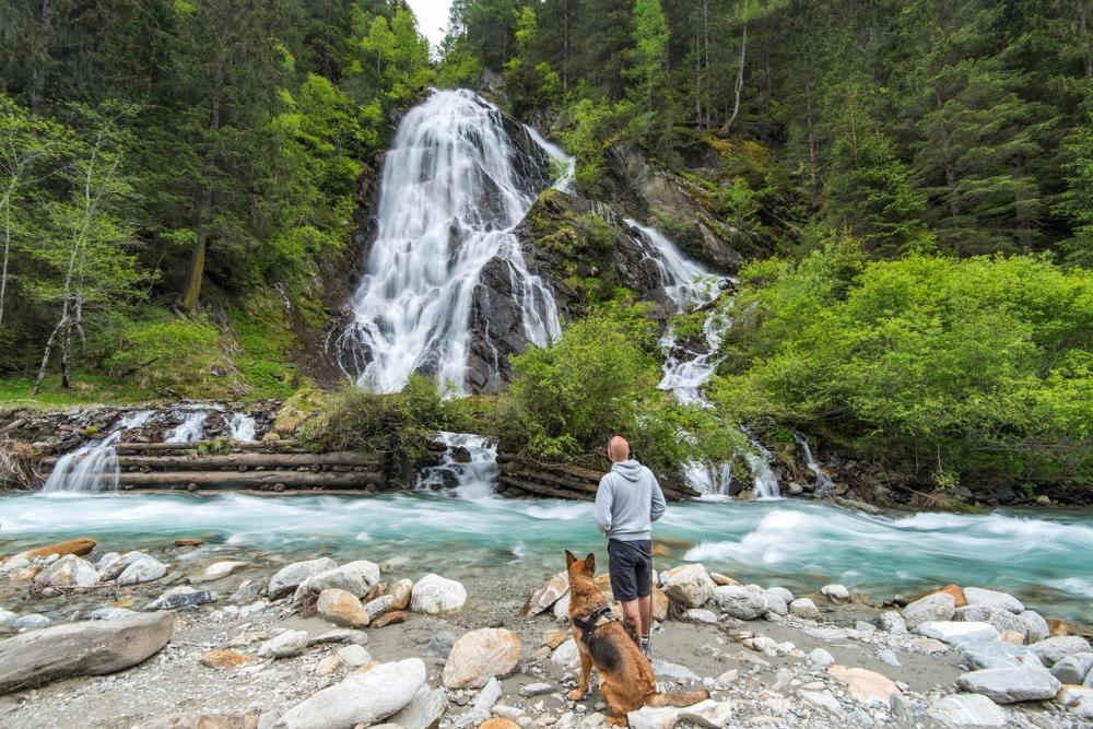 Découvrir l'Autriche et ses Alpes, avec son chien