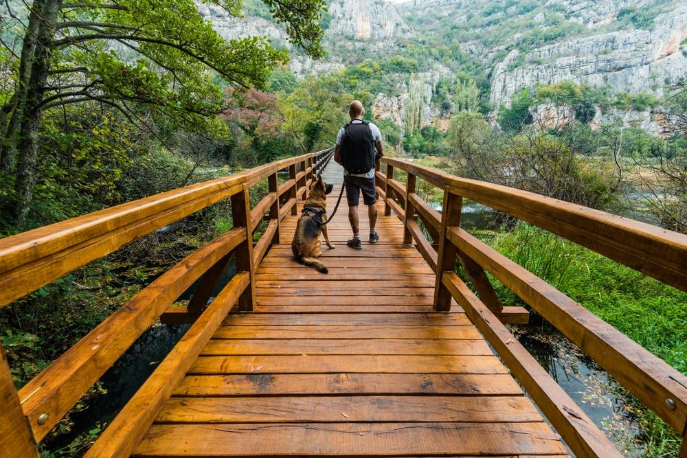 Visiter le Parc National de Krka avec son chien