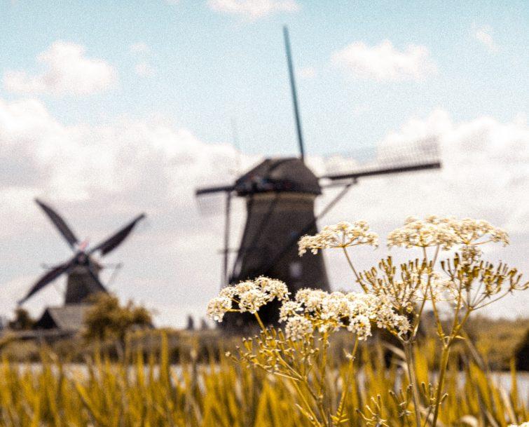 Histoire des moulins de Kinderdijk