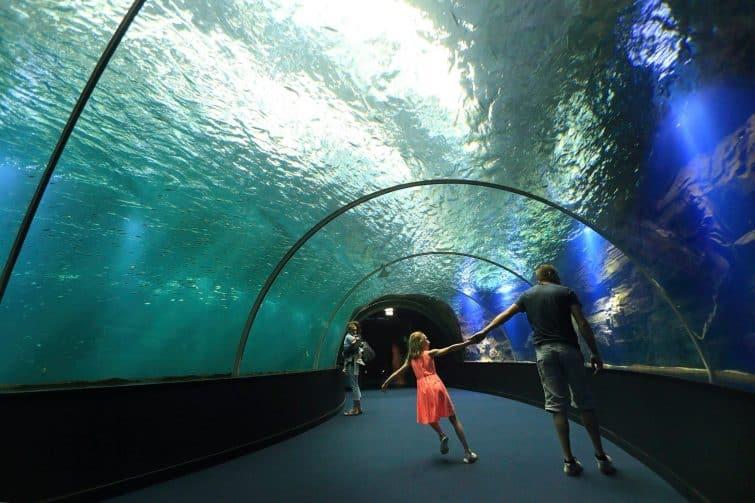 Le tunnel de Nausicaa