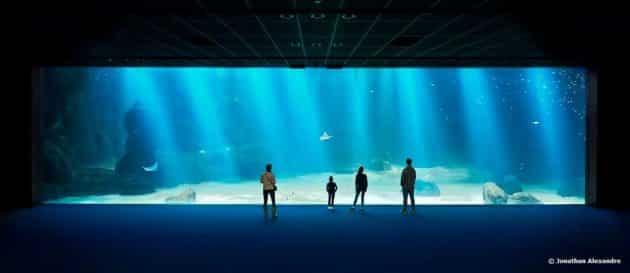 Visiter Nausicaá – Centre national de la Mer : billets, tarifs, horaires