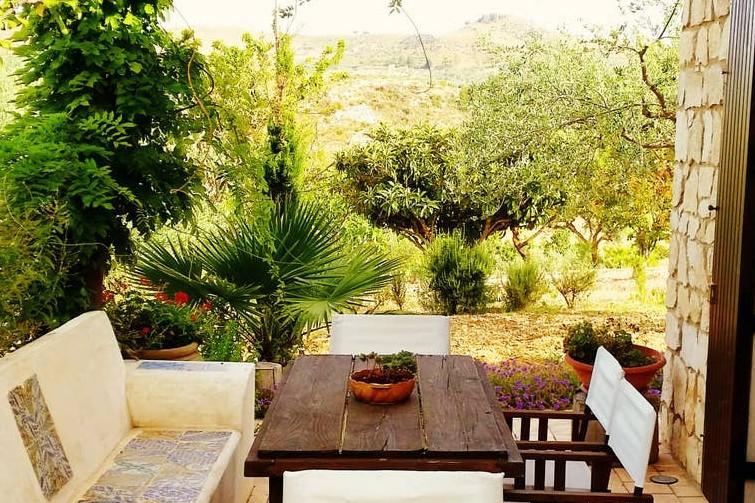 Logement rustique entouré d'oliviers