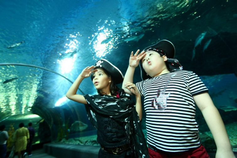 Visites guidées à Sea Life Ocean World