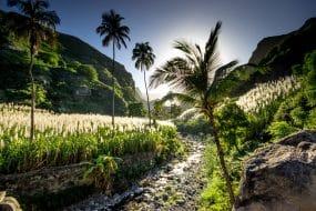 Nature à San Antao - Cap-Vert