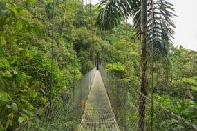 Pont suspendu au parc naturel de la forêt tropicale, Costa Rica