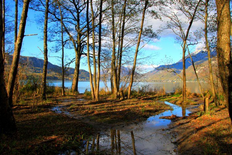 Réserve à l'extrémité du lac d'Annecy, Doussard, Alpes françaises