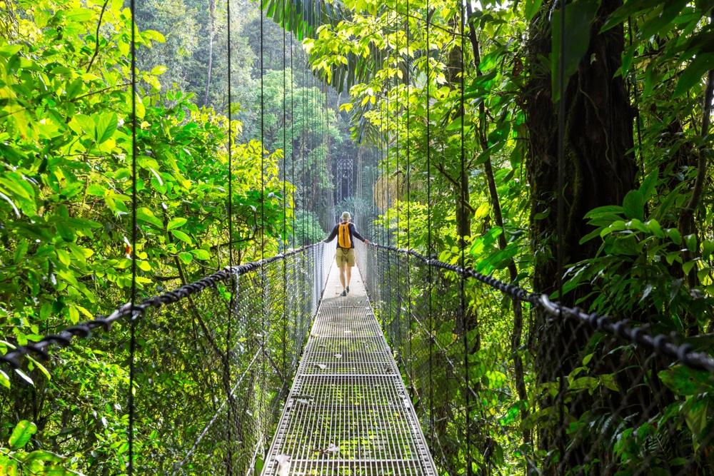 Hike in the green tropical jungle