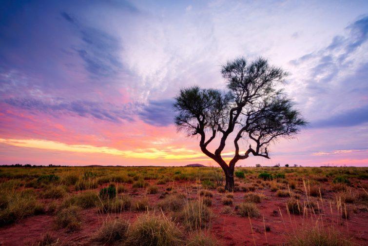 L'assurance voyage : idéal pour l'Australie et sa nature imprévisible