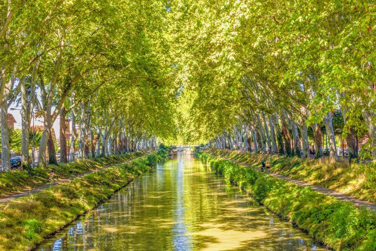 Que faire au Canal du Midi ?