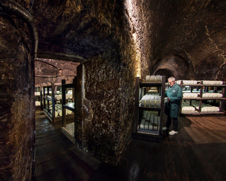 Les caves de Roquefort Société