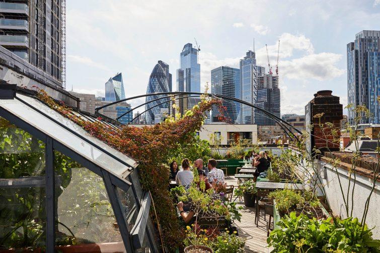 Culpeper Roof Garden, un des plus célèbres rooftops de Londres
