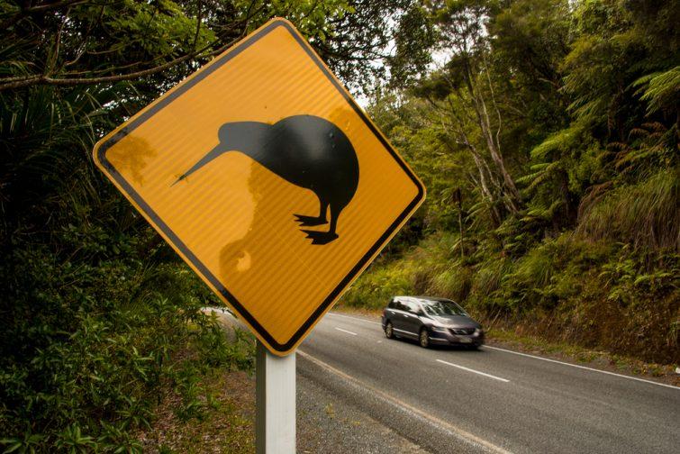 Assurance voyage Nouvelle-Zélande : assurance voiture
