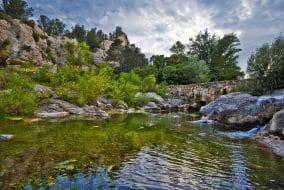 Rivière dans le Haut-Languedoc