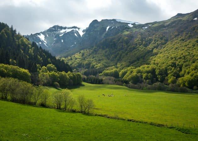 Visiter la Réserve naturelle nationale de la vallée de Chaudefour : réservations & tarifs