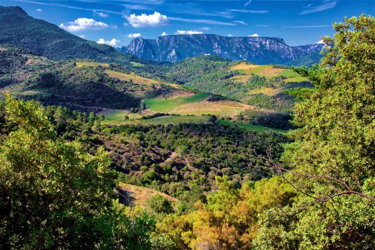 Vignobles et montagnes de Saint-Chinian, Occitanie