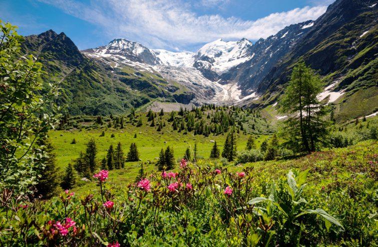 Vue imprenable sur les Alpes françaises, partie du célèbre trek - Tour du Mont Blanc
