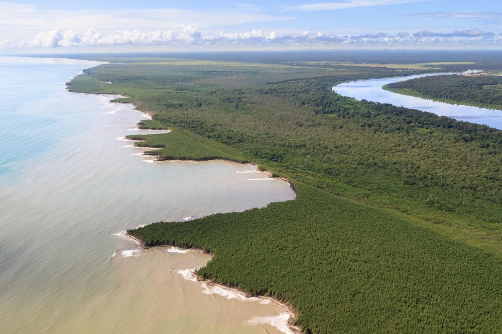 La Forêt Amazionienne, Guyane
