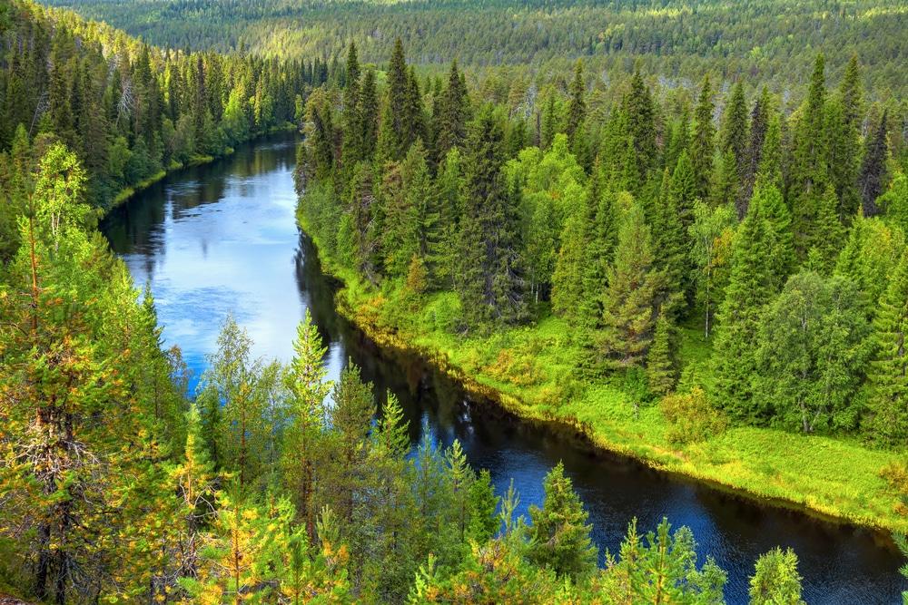 Courbe de la rivière d'Oulanka et son parc national, Finlande