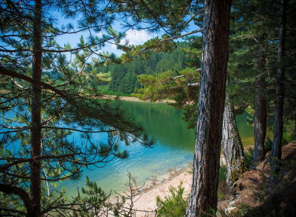 Le Lac Arvo dans les bois de Sila, Italie