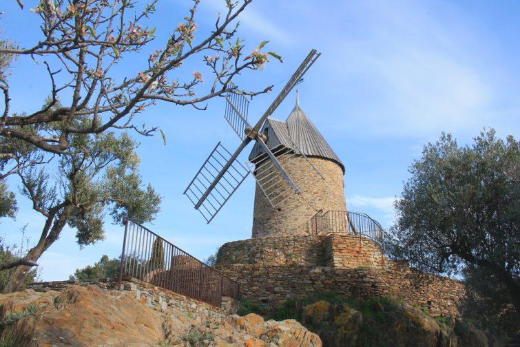 Le moulin à huile et la garrigue de Collioure