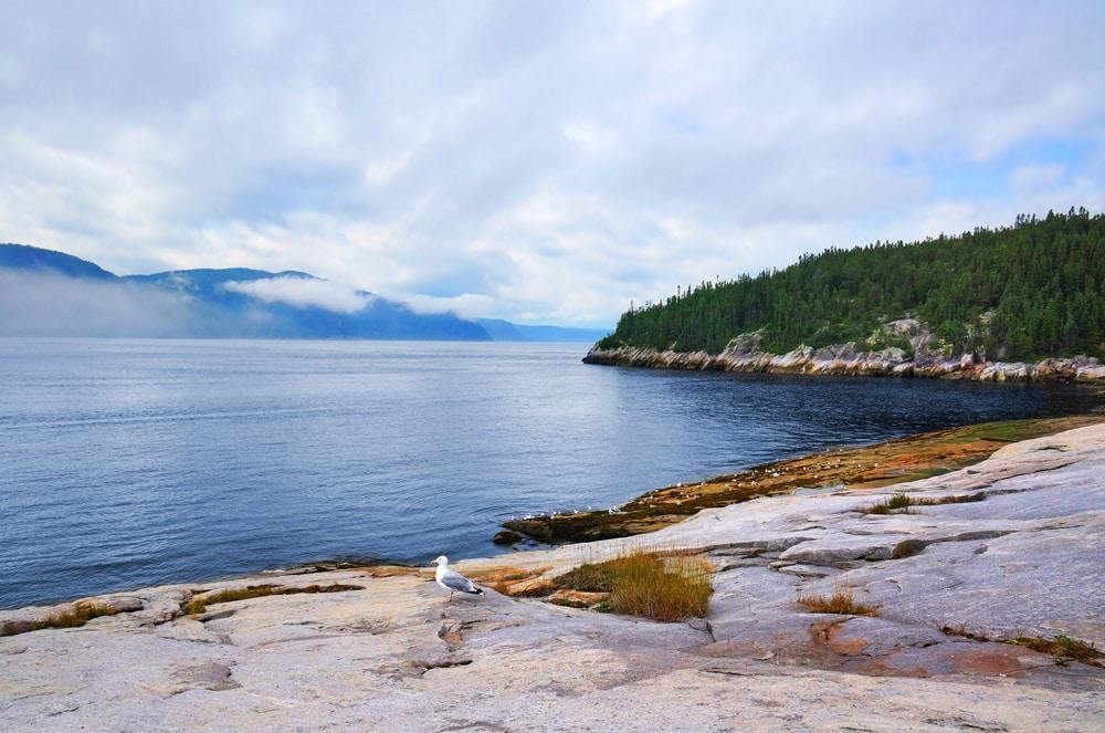 Visiter le Québec et la baie de Tadoussac
