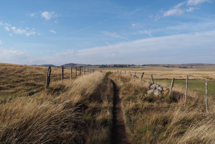 Chemin de randonnée dans le parc naturel régional d'Aubrac