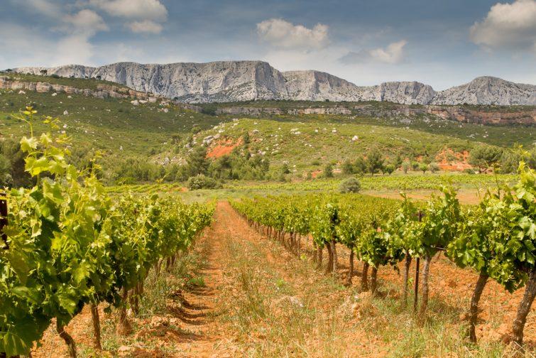 Randonnée autour d'Aix-en-Provence : vue sur la face sud de la Sainte-Victoire