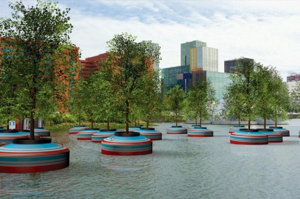 Mini-forêt flottante de Rotterdam