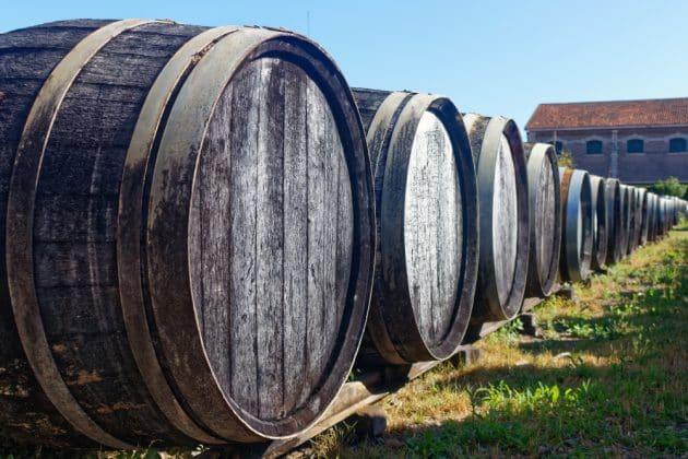 Visiter les vignobles de l'Armagnac : guide complet