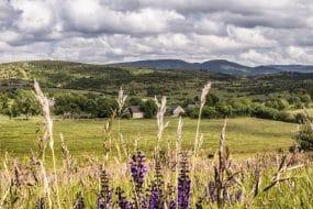 Visiter le Parc naturel régional des Grands Causses