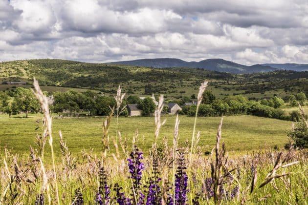 Les 12 choses incontournables à faire dans le Parc naturel régional des Grands Causses