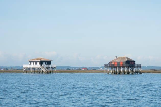 Visiter l'Île aux Oiseaux : réservations & tarifs