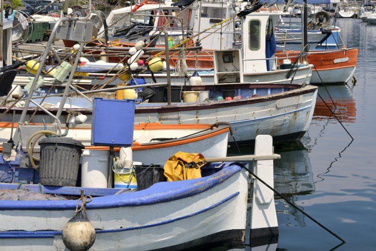 Bateau à Cavalaire-sur-Mer 4