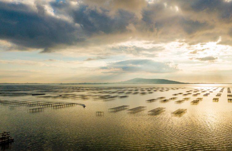 Visiter l'étang de Thau : Etang de Thau en quelques mots