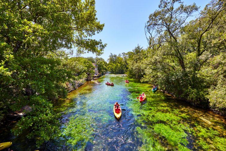 Kayak sur la Sorgue