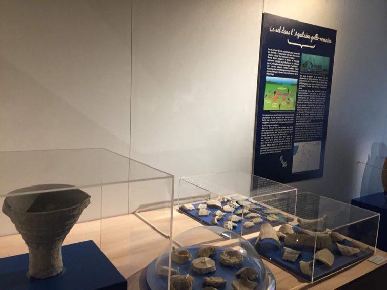 Le musée de Borda