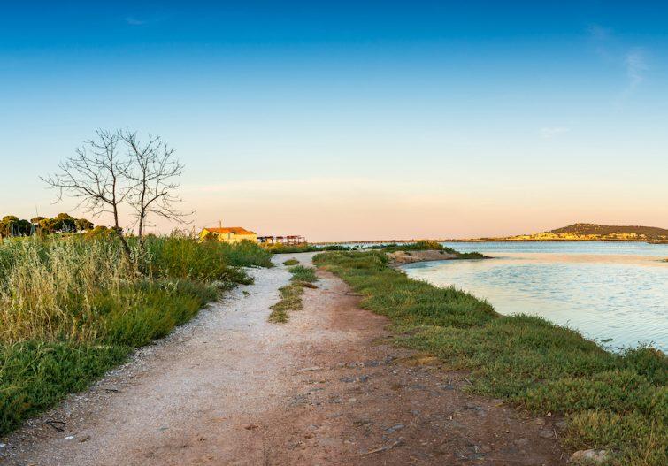 Visiter l'étang de Thau : Randonnée à l'étang de Thau