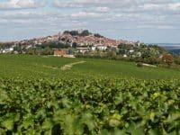 Visiter à Bourges : Sancerre