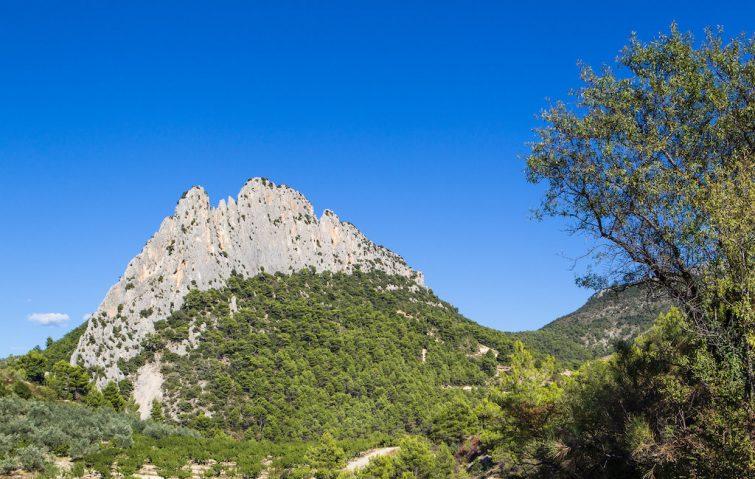 Visiter le Parc Naturel Régional des Baronnies Provençales : escalade