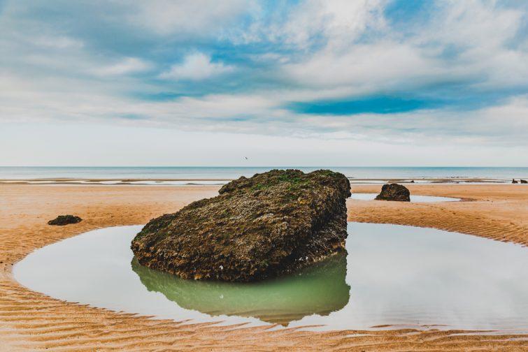 Visiter la Côte Fleurie : la falaise des vaches nories