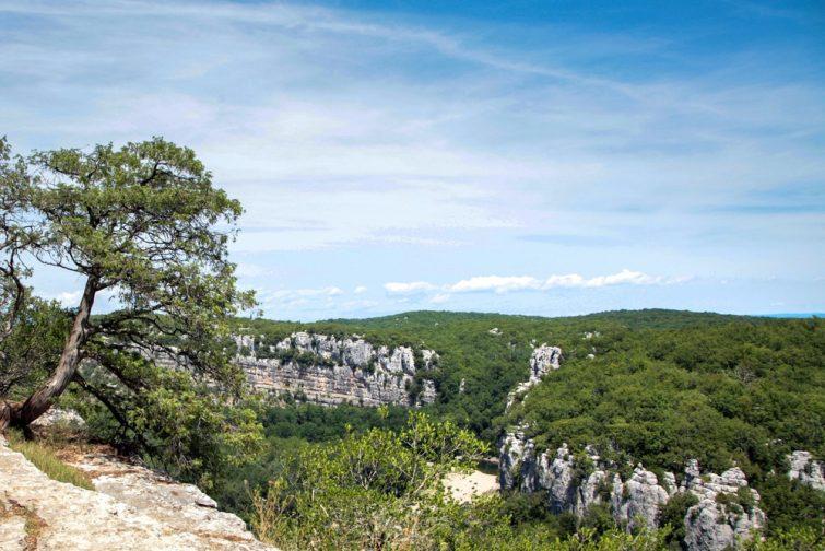 Visiter l'Ardèche Le bois de Païolive
