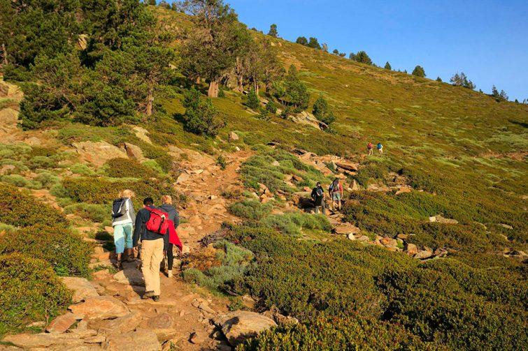 Visiter le Pic du Canigou : Randonnée guidée au Pic du Canigou