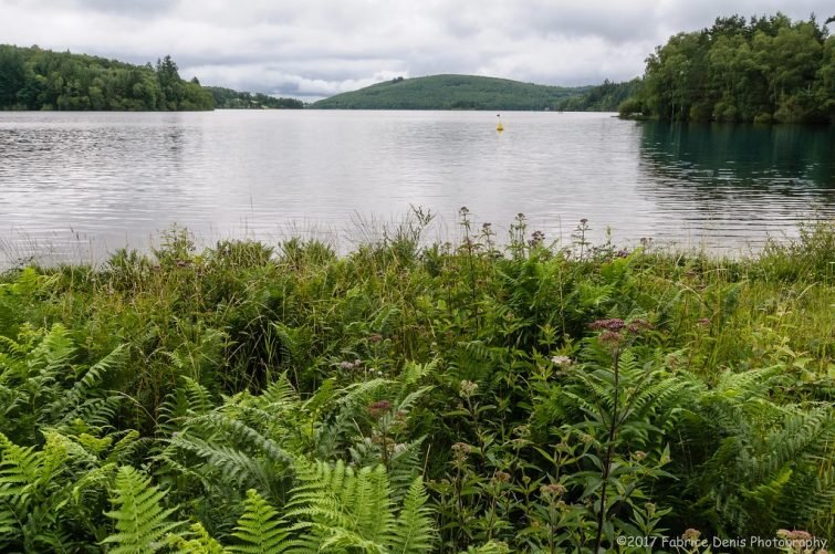 Parc de Millevaches vue sur l'étang