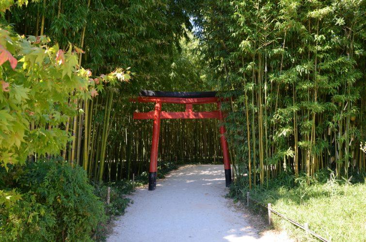 Jardin japonais à la Bambouseraie d'Anduze