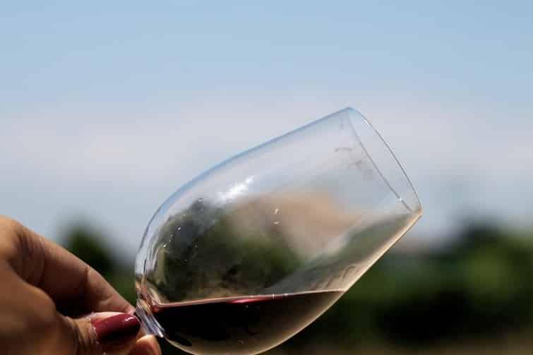 Visiter la Drôme et ses vignobles