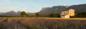 Visiter la Drôme